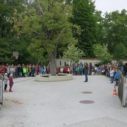 Staffelübergabe Waldorfschule Karl Schubert Graz